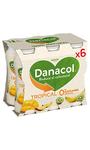 Yogur Danacol Tropical x6